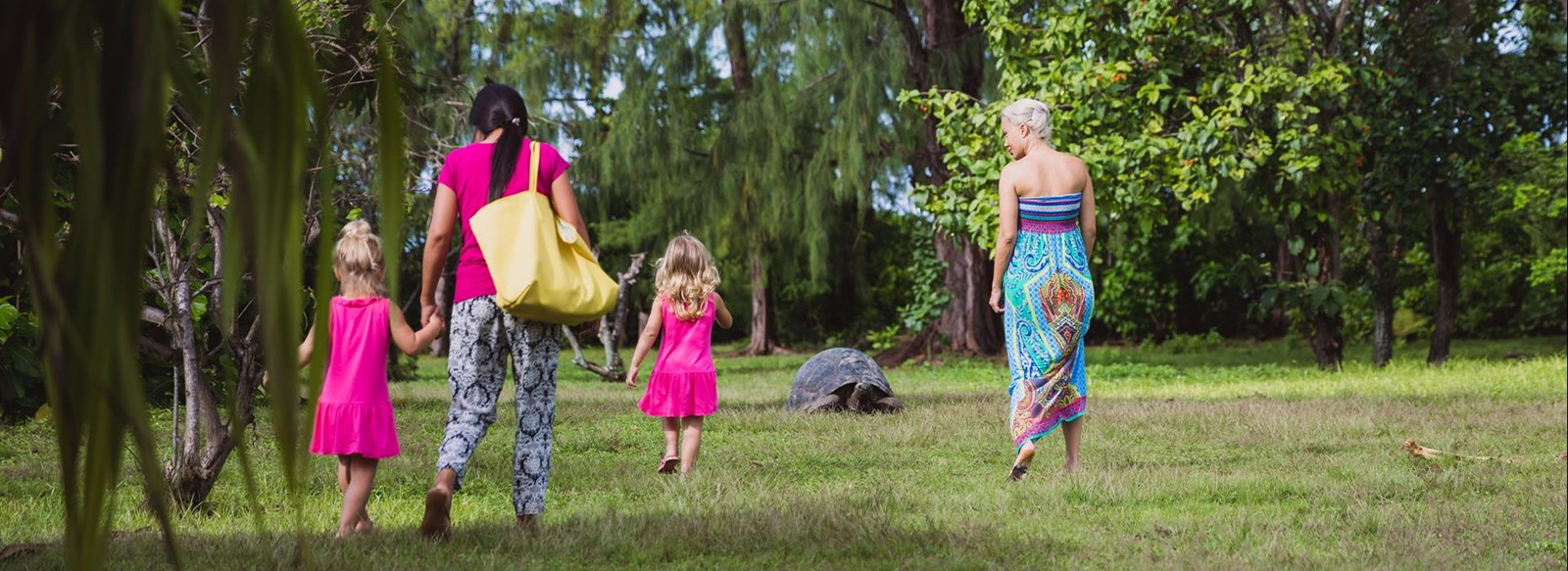 Family with tortoises and turtles on Bird Island Seychelles